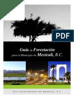 2 GUIA FORESTACION MXLI.pdf