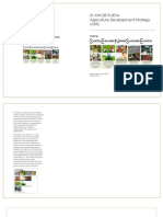 Agriculture Development Strategy