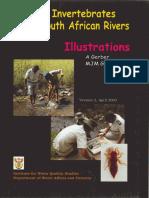 Aquatic Invertebrates of South African Rivers