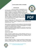 CURSO DE ETOLOGÍA y peluqueria (2).docx