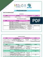 2019-programacion_congreso_neuropsicologia_scn.pdf
