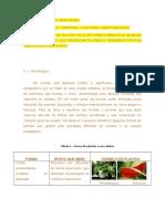 Atributos Da Vegetação