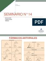14. Seminario 14 - Farmaco Usmp