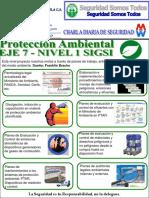 Charla Nº 44 Eje 7 Nivel 1 SIGSI Protección Ambiental