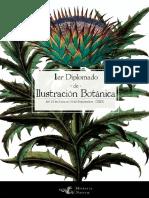 Diplomado-Botánica