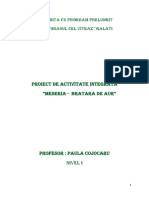 proiect paula joi.docx