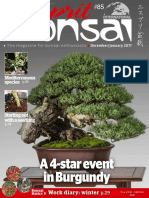 Esprit Bonsai International - December 2016 - January 2017