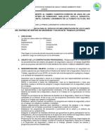 TDR SEGURIDAD Y SALUD- IMA rpr.docx