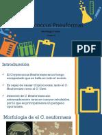 Criptococcus Pneuformas