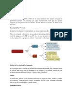Análisis de Oferta y Demanda.2.docx