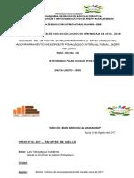 Informe Aspi Visita Junio - 2017