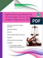 Principios - Art 356