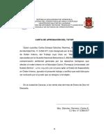 Cap 1 Meneses 2010 (1) en Word Acetacion Del Tutor