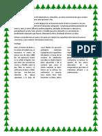 CARMEN UNIDAD.docx
