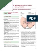 Anatomofisiologia Del Aparato Genital Femenino