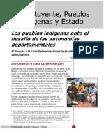 Jose L. Lopez. Los Pueblos Indigenas Ante El Desafio de Las Autonomias Departamentales.