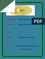 Las Formas Espaciales e La Conclucion Del Proceso Civil