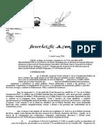 Directiva de Intervencion Policial