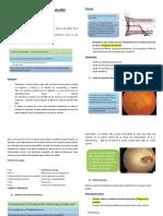 sindrome isquemico ocular