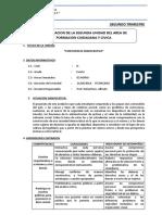 MODELO DE PLANIFICACIÓN DE UNIDAD DE F.C.C. 4° - BUENOS AIRES - copia 3