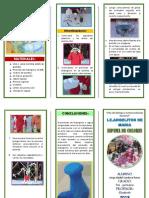 ESPUMA DE COLORES triptico.docx