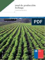 09 Manual Lechuga