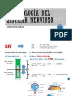 Embriologia del sistema nervioso.pptx