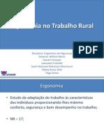 Trabalho Ergonomia Rural