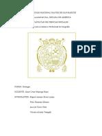 Informe Geologia Chorrillos 2019