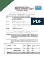 INFORME DE LA ECE.docx