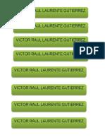 raulito.pdf