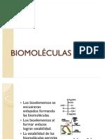 58505803-BIOMOLECULAS.pdf