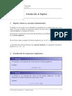 II. Álgebra.pdf