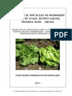 Plan Produccion Horticola Ayash.pdf