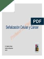 Señalizacion y Cancer