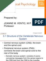 Anatomy-of-the-Nervous-System.pptx