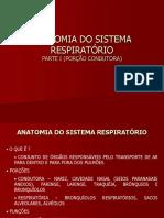 Anatomia Do Sistema Respiratorio i