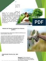Presentación1-derecho-genetico..-derecho-ambiental.-industrial.pptx