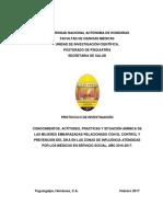 Protocolo.cap.Sobre.zika.Situacion.animica.y.embarazo 1febrero2017