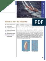 vectores fisica.pdf