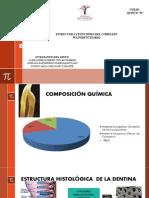 estructura y funciones dentinopulpar - endodoncia - corregido.pptx