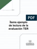 Ejemplo Items LEC TER-A