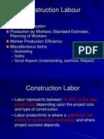 L16 Construction Labour.pptx
