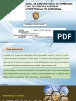 COSECHA Y POSTCOSECHA TRIGO.pptx