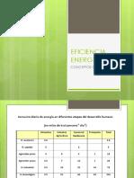 EFICIENCIA ENERGETICA 1