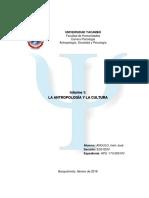 Informe 1_La antropologia y la cultura_Irwin Angulo HPS -173-00010V_ED01D0V.pdf