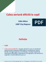 Calin-Mitre-Calea-aeriana-dificila-la-copil.pdf