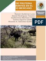 Bancos de Proteína p Rumiantes en Semiárido Mexicano