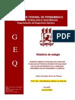 Relatório de Estágio - Carlos Henrique Alves de França