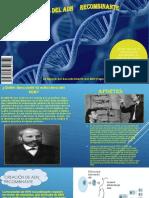 ADN Biologia 3